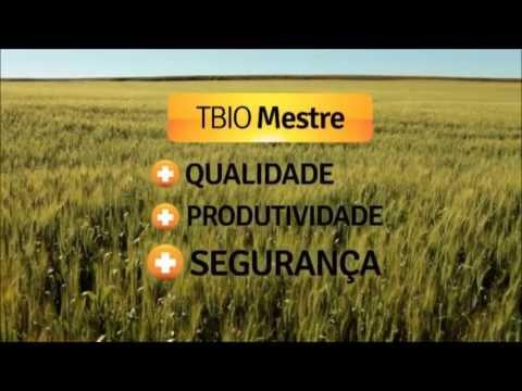 TBIO Mestre - Rio Grande do Sul Safra 2013