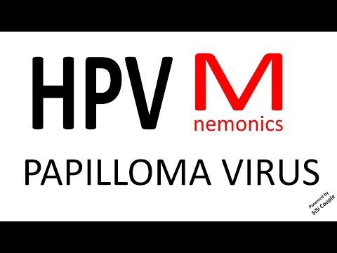 Rektális laphám papilloma patológia