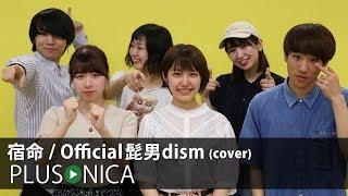 宿命  Official髭男dism (cover)
