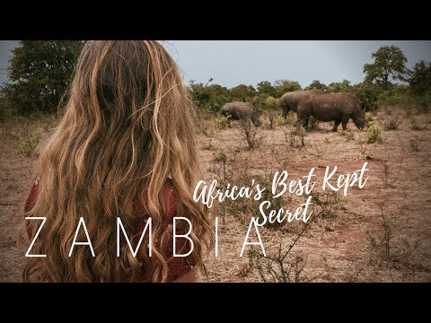 We Saw The Big 5!   ZAMBIA ADVENTURES   Travel Diary