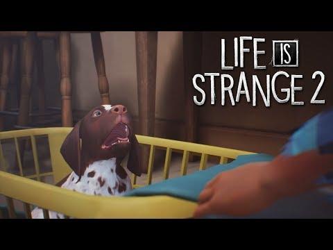 Life is Strange 2 - ŠTĚŇÁTKO!