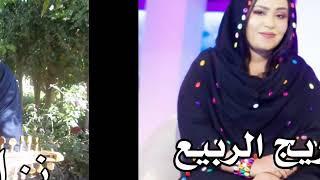 مازيكا أغنية القلب اتقطع كلمات الشاعر مصطفى ود المأمور الحان نزار الحميدي أداء أريج الربيع تحميل MP3