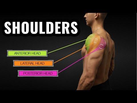 Ćwiczenia dla szybkiego napięcie mięśni