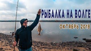 Рыбалка в ярославской области недорого без посредников с