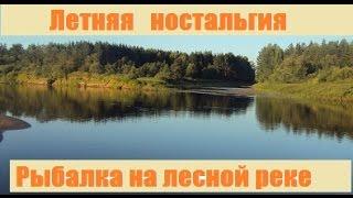 Турбазы с рыбалкой в костромской области