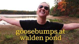 Goosebumps at Walden Pond