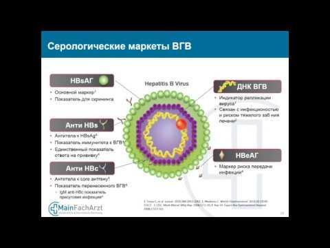 Гемоконтактные гепатиты и их профилактика