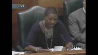 Jolanda Jones on Council Expansion