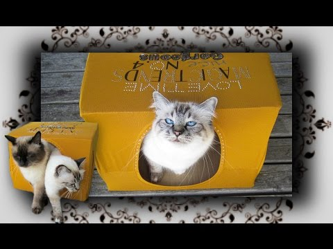 DIY 😻 T-Shirt Karton Höhle für Katzen | carton cave for cats