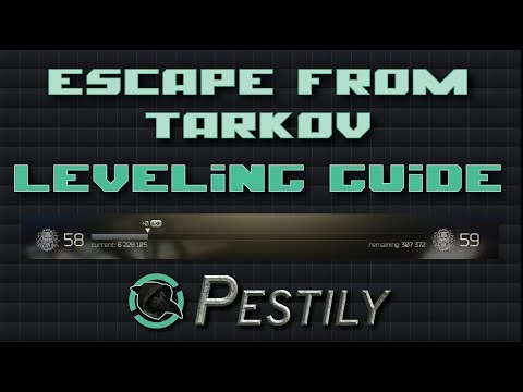 Best BUDGET Loadout - Escape from Tarkov ( guide