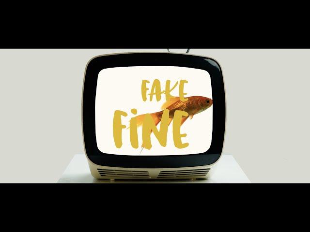 Fake Fine (feat. Gnash) - Robert Grace