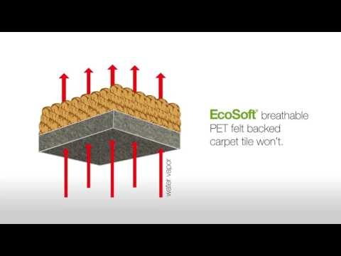 Ecosoft for Wet Slab by Carpets Inter