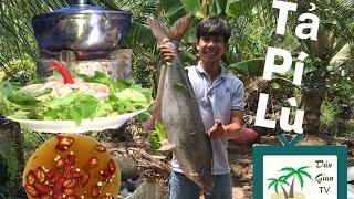 Tả Pí Lù - Cá Tra Nhúng Giấm | DGTV Tập 22