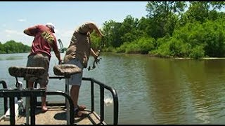 When Giants Fall - Bowfishing on the Mississippi River
