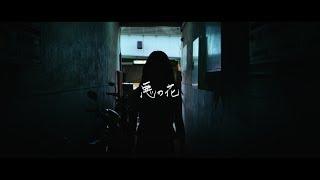 ペンギンラッシュ – 悪の花 (Official Music Video)