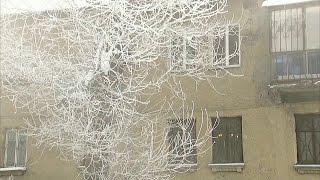 Внескольких регионах России установилась аномально морозная погода.