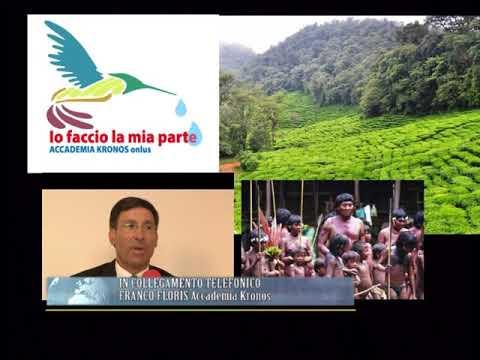 ACCADEMIA KRONOS IMPEGNA A TUTELA DELLA FORESTA AMAZZONICA