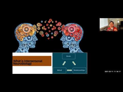 How Can Interpersonal Neurobiology Be Integrated Into Financial ...