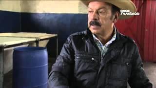Bebidas de Mexico - Pulque