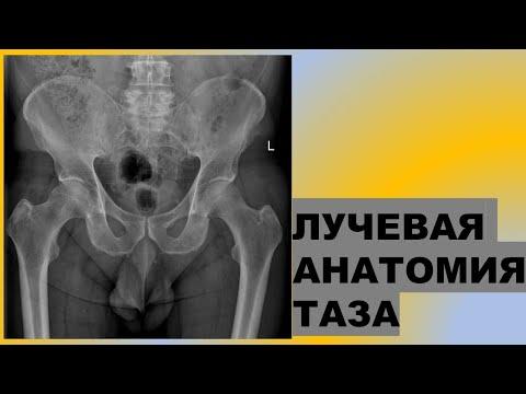 Больничный лист при бурсите локтевого сустава