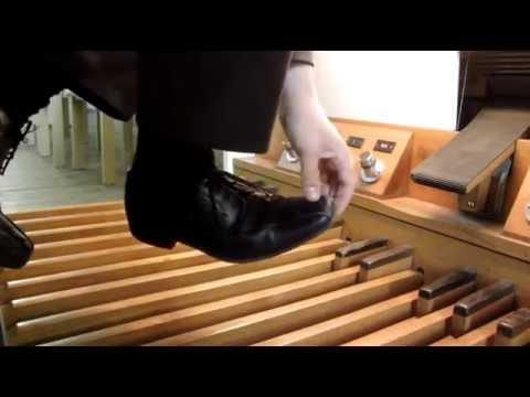 Chinesisch das Mittel von gribka der Nägel der Bambus