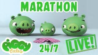 Piggy Tales Live Stream Marathon 24/7 🔴   Angry Birds