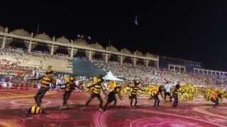 """Philippines' """"Buyogan"""" Bee Dance in World Culture Festival, India"""