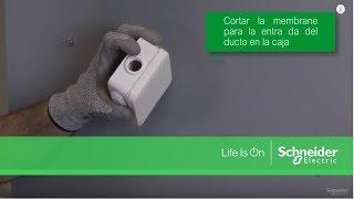 Mureva Styl by Schneider Electric - Video Installation Mureva styl range