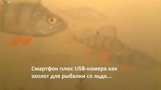 Подводная камера для зимней рыбалки своими руками из смартфона