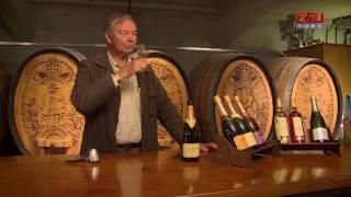 Önümüzdeki üç yıl içinde Çin'in, ABD'den sonra dünyada ikinci büyük şarap piyasası olması ön