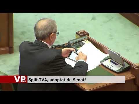 Split TVA, adoptat de Senat