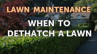 When to Dethatch a Lawn