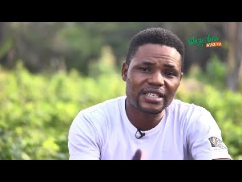 GREAT IMPORTANCE OF AGRICULTURE IN NIGERIA