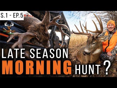 Late Season MORNING HUNT?<br>Episode 5