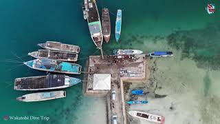 preview picture of video 'Wakatobi Dive Trip I Dive With Luci and Galih'