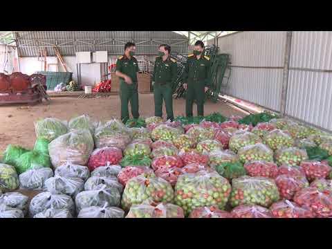 Học viện Lục quân hỗ trợ nông sản, phục vụ công tác phòng, chống dịch Covid-19