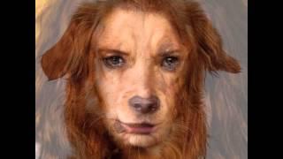 Dog turns into Woman