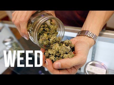Cara pakai corp slim herbal