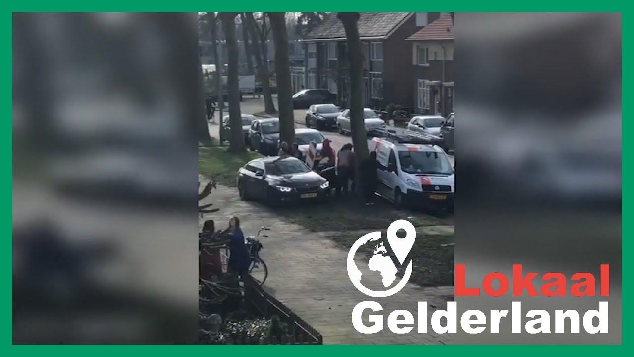 Zutphen gaat de stijd aan met ganzen: 'het zijn er echt te veel'