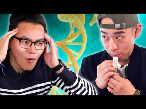 Asian Americans Take An Ancestry DNA Test