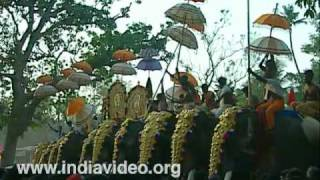 Cherai Pooram - Elephants all the way