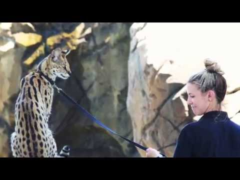 Zoo Miami at a Glance
