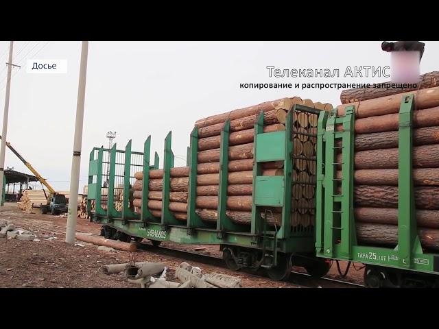 Крупную партию древесины вывезли в Китай