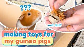 Quick, Cheap, & Easy DIY Guinea Pig Toys   GuineaDad