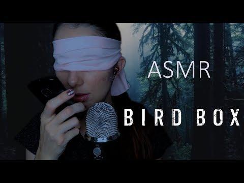 ASMR BIRD BOX