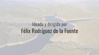 Tras las huellas de Félix