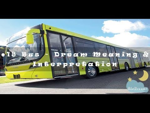 10 Dreams About Buses - Meaning and Interpretation