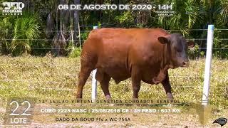 Coro 2225 b4 fiv