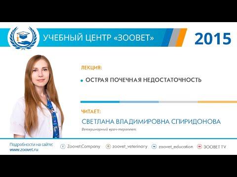 С. В. Спиридонова в УЦ «Зоовет» | Острая почечная недостаточность