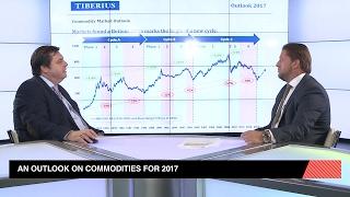 Commodities en 2017